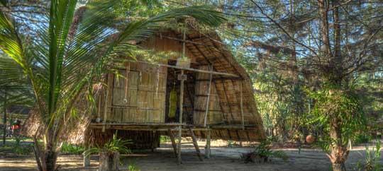 Tropical Island Beach Hut: Where To Stay?